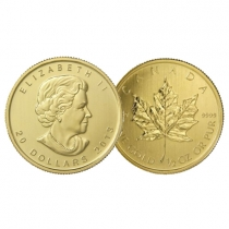 dollaro-canadese-5.jpg